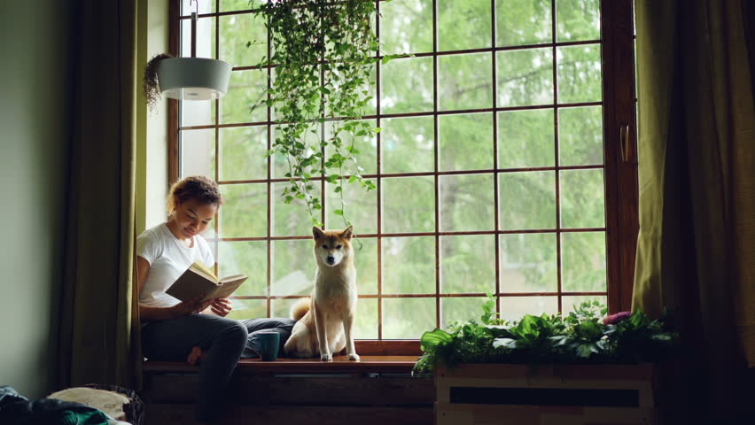 Pretty young woman is reading book sitting on windowsill and looking outside together with cute pedigree dog. Beautiful green plants, modern interior and curtains are visible. #1012911782