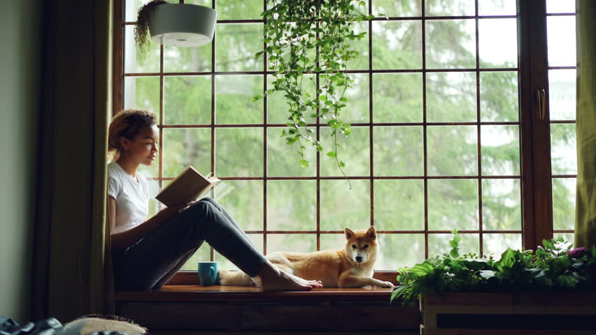 Attractive young lady is reading book sitting on windowsill in the house together with adorable puppy. Large window, green plants, nice interior is visible. Royalty-Free Stock Footage #1012911794