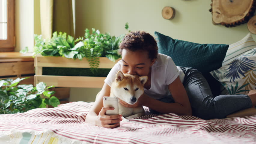 Joyful dog owner is taking selfie with cute pet lying on bed together holding smartphone posing and hugging animal. Friendship between people and puppies concept.