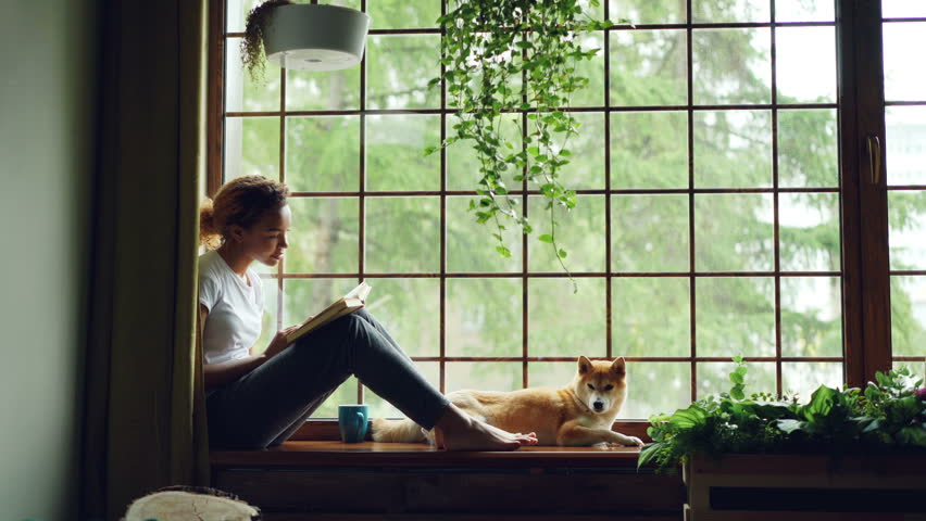Charming female student African American girl is reading book sitting on windowsill near lovely pet dog lying beside her. Home, hobby and animals concept. #1012914686