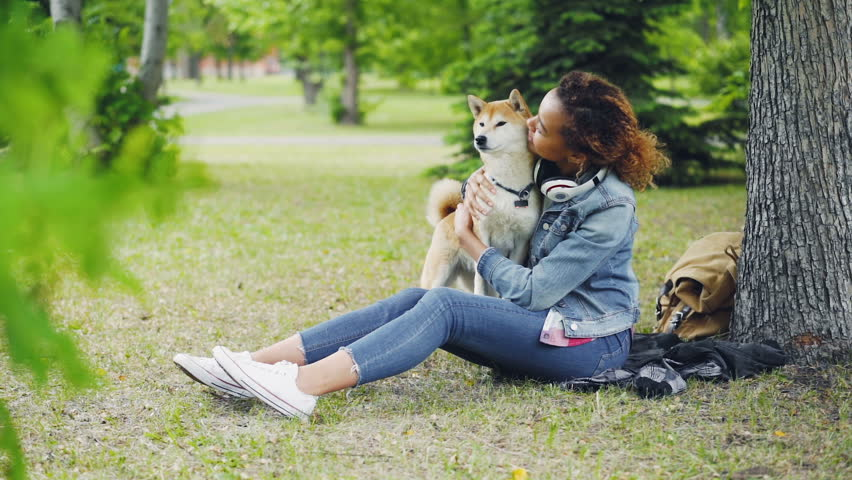 Slow motion of cheerful girl happy pet owner caressing, kissing and hugging her shiba inu doggy expressing affection while sitting in park on green grass. | Shutterstock HD Video #1012914737