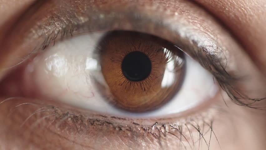 Close up woman brown eye opening looking wearing makeup cosmetics mascara optical beauty   Shutterstock HD Video #1013106128