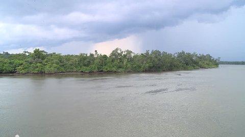 Pan on tropical river - Gabon
