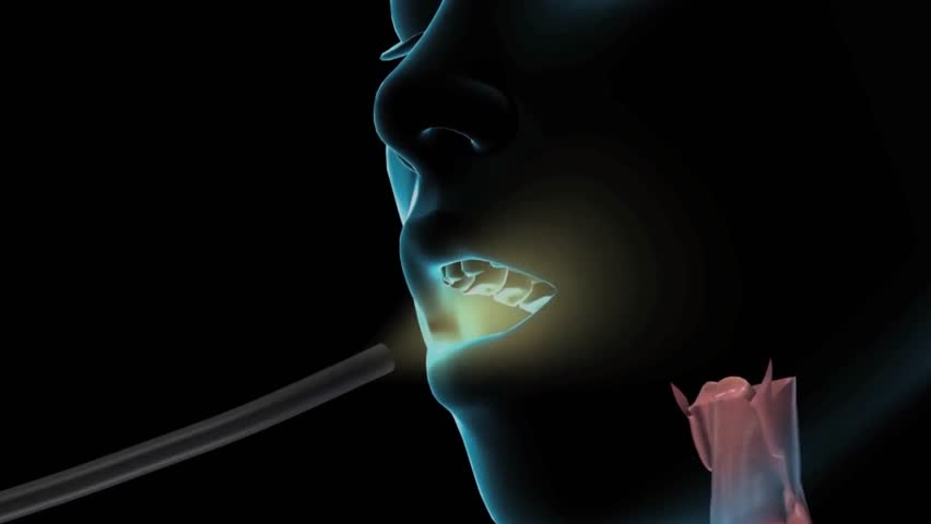 3D Animaton the female Esophagus Endoscopy. Esophagus channel seen from an endoscopic camera with downward motion with instrument leaving gut.