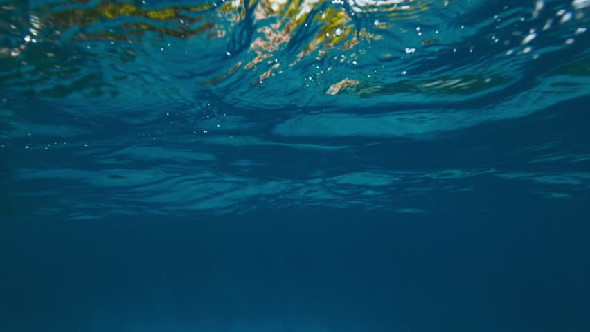 Beautiful underwater background in tropical sea  #1013263631