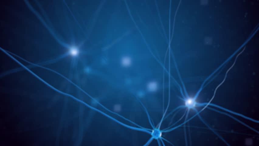Fly through neuron cells (loop video)