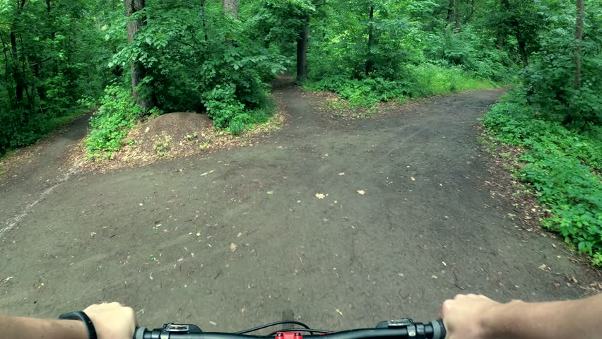 Bicyclist rides through the forest, fast speed | Shutterstock HD Video #1013430638