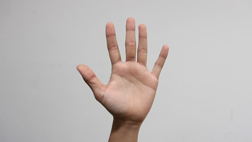 Hand showing palm or high five gesture isolated on white background. HD 1080p Royalty-Free Stock Footage #1013497619