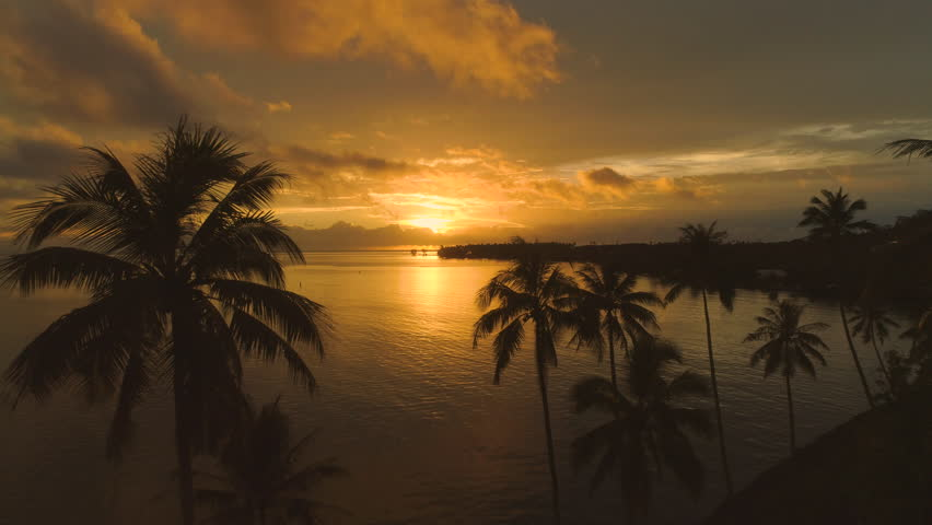 AERIAL: Golden evening sun shining on paradise island disappears behind the clouds and horizon. Spectacular view of tall palm trees, tranquil ocean water and breathtaking sunset in French Polynesia.