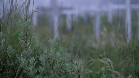 Cemetery Full of White Crosses in Field in Greenland in Slow Motion