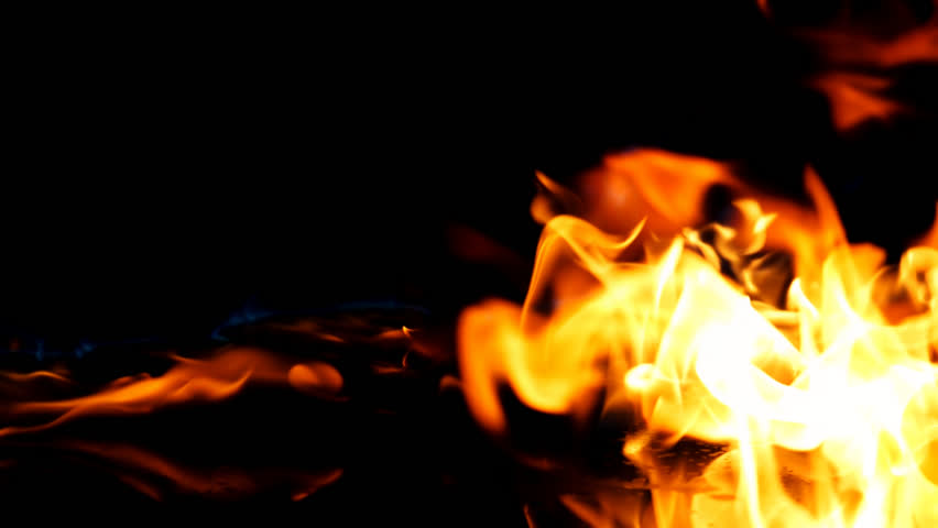 Fire Flames Igniting And Burning - Slow Motion. A line of real flames ignite on a black background. Real fire. Transparent background. PNG + Alpha | Shutterstock HD Video #1013816408