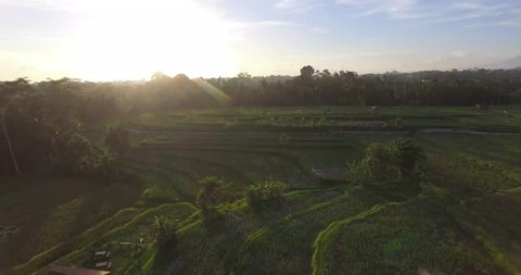A flight over the landscape of Bali