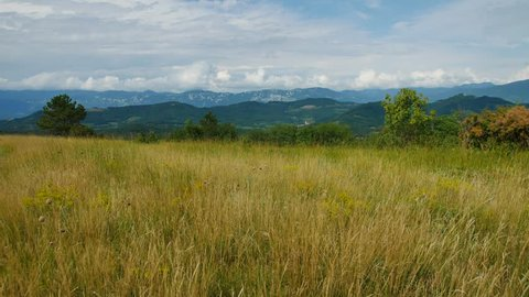 wide grass field in summer with mountains and cloudy sky