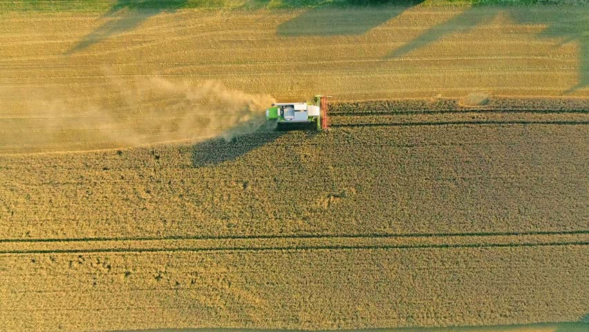 4K aerial footage of combine harvester harvesting wheat at sunset #1014011771