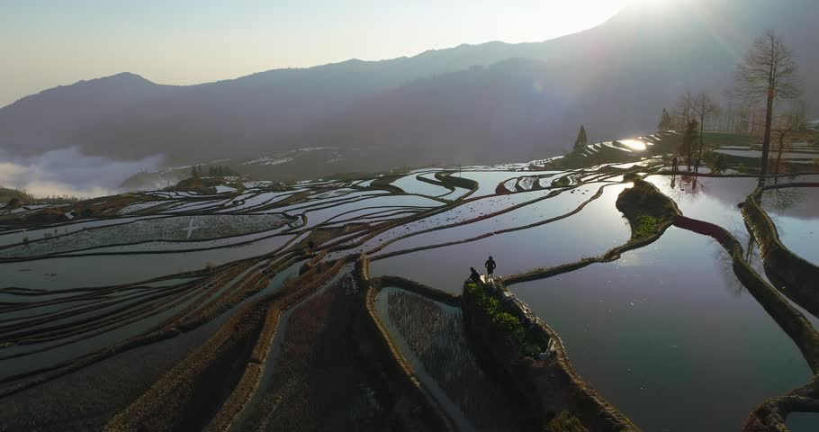 Aerial morning scene of Yuanyang Rice Terraces with water-filled rice paddies and reflections of the rising sun on the water surfaces. UNESCO World Heritage Site, Southern Yunnan Province, China.