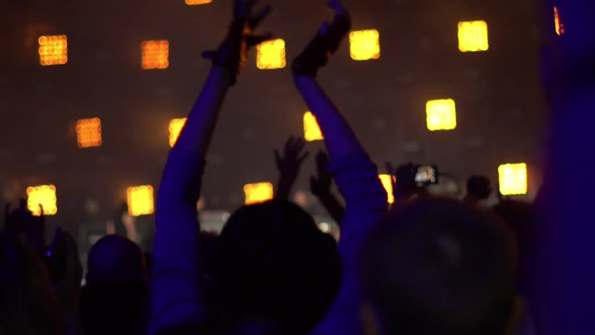 People at a rock concert | Shutterstock HD Video #1014086072