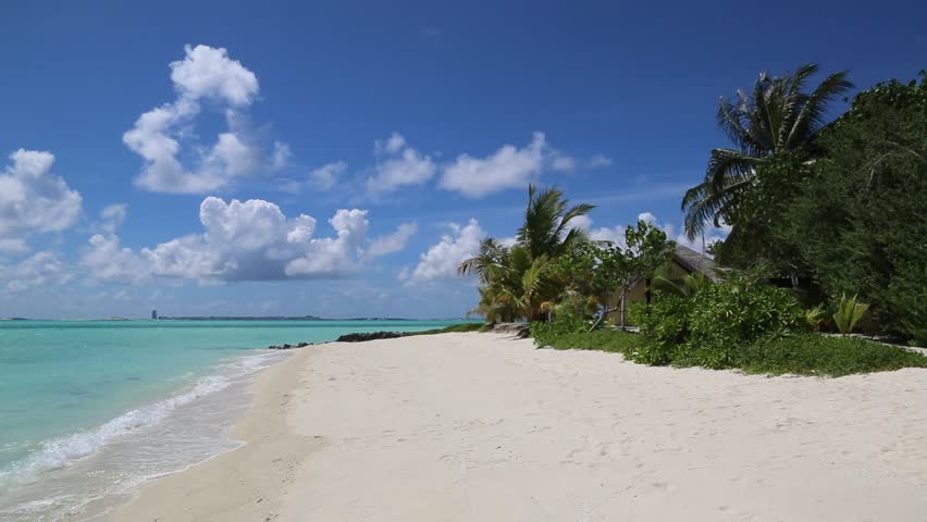 Tropical beach in the Maldives at summer day   Shutterstock HD Video #1014316103