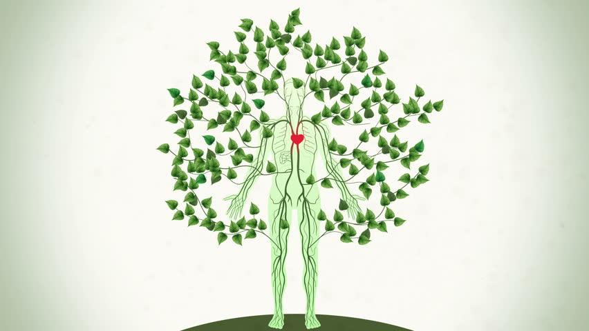медленной, верной картинки дерево личности каталоге одежды ставрополя