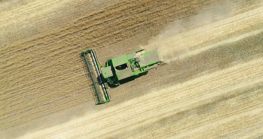 Modern combine harvester working on the wheat crop. Aerial view. | Shutterstock HD Video #1014619046