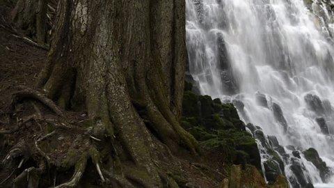 Lockdown shot of water flowing through rocks at Ramona Falls