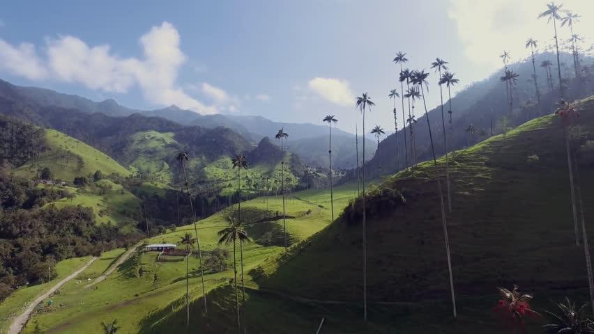 Aerial Valle de Cocora Quindio Colombia 06