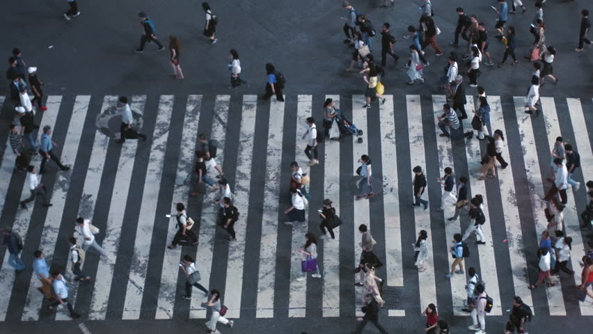 Elevated High Angle / Top Down Shot of the People Walking on Pedestrian Crossing of the Road. Big City with Crowd of People on the Crosswalk in the Evening.