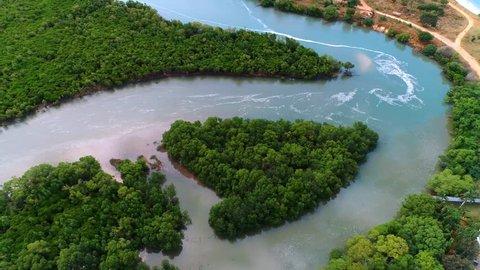aerial view of the mangrove swamps, Dar es Salaam