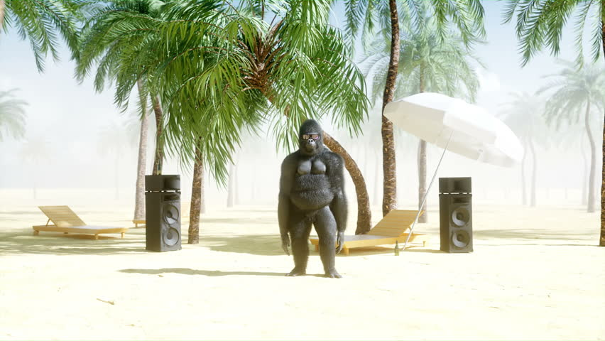 Funny gorillas and monkeys dancing on sunny seaside. Tourism and rest concept. Realistic 4K animation.