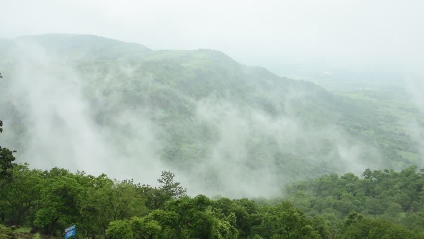Aerial top view of Fog covers forest, View from above | Shutterstock HD Video #1014882139