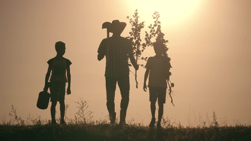 A happy family. Father and two sons plant and water the tree in the park at sunset. The concept of a happy family | Shutterstock HD Video #1014961828