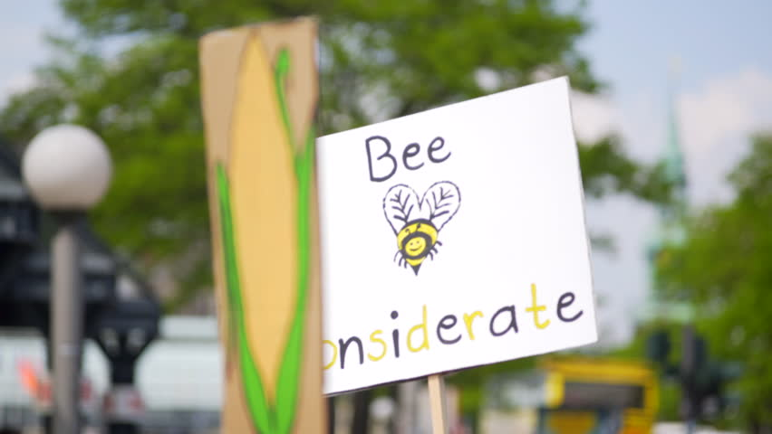 GERMANY - CIRCA MAY 2017 - Bee Considerate sign, environmentalist protest, march against Monsanto, Hamburg | Shutterstock HD Video #1015061623
