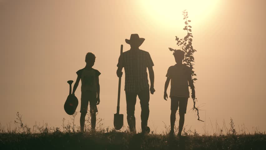 A happy family. Father and two sons plant and water the tree in the park at sunset. The concept of a happy family | Shutterstock HD Video #1015077826