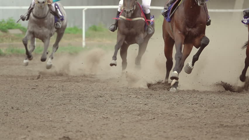 Horse racing at the racetrack. A group of riders pass the curve.Slow motion