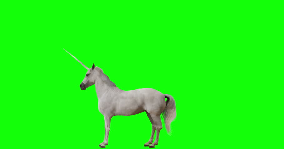 Unicorn rearing. Isolated animation. Green Screen Royalty-Free Stock Footage #1015419277