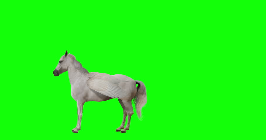 Pegasus and winged Unicorn flying on a transparent background. Isolated and cyclic animation. Seamless loop. Green Screen Royalty-Free Stock Footage #1015420135