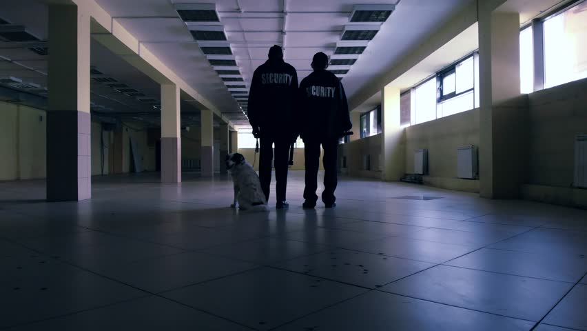 Security guards with a dog inspect the room #1015630441