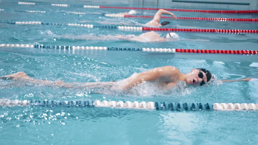 Slow motion swimmer competition or training at swimming pool | Shutterstock HD Video #1015779919
