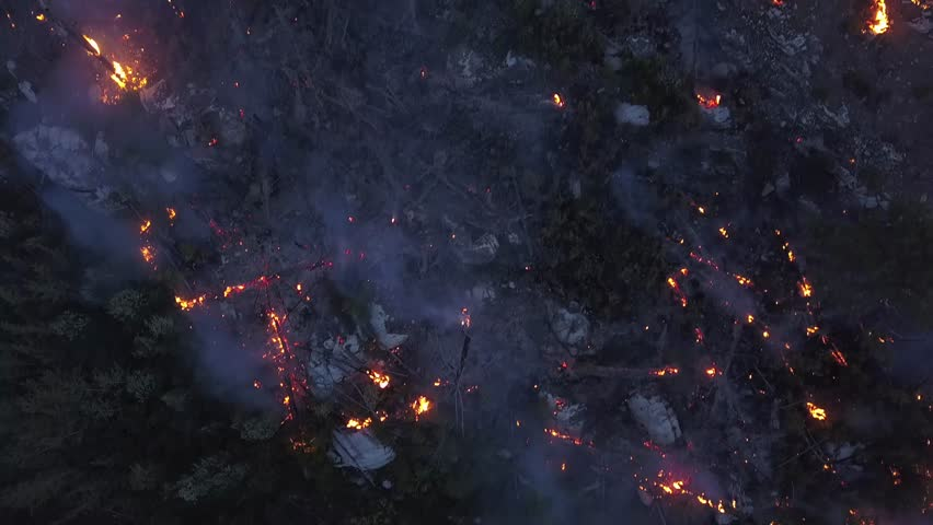 BC Wildfire burning and flames in overhead 4k drone shot. Aerial view onto forest fire at twilight or dawn. Flames, glow, blaze and smoke over dead woods and trees.