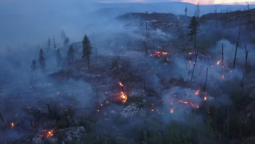 Aerial view of forest fire. Drone shot of wildfire burning and flames from above. Rare view onto flames and smoke at twilight or dawn. Glow, blaze in Canada, BC British Columbia