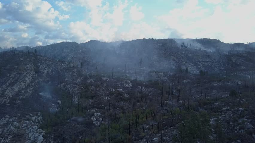 Wildfire smoking like hell. Rare drone view onto forest fire and aftermath.  smoke over dead woods and trees  British Columbia forest fire landscape in aerial view from above. Royalty-Free Stock Footage #1015897861