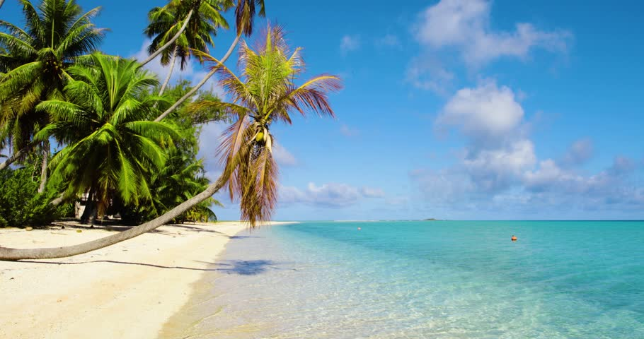 Dream beach in French Polynesia   Shutterstock HD Video #1015937818