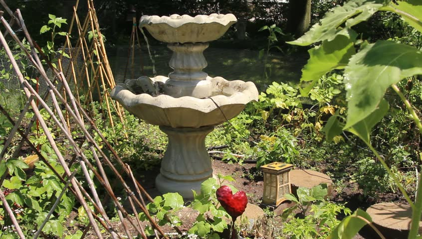 City Vegetable garden with fountain and trellis in the summer | Shutterstock HD Video #1015984837