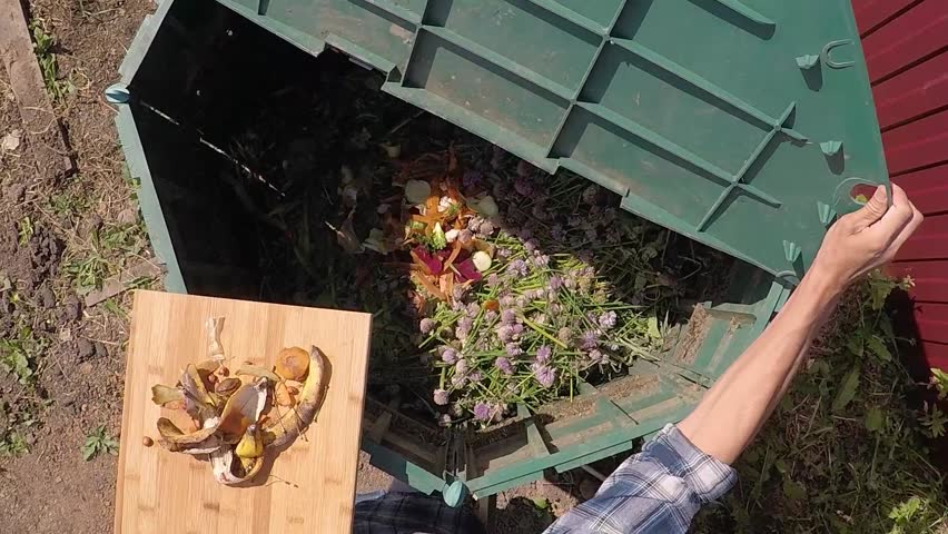 Farmer's hands throwing out kitchen waste to the garden compost heap for recycling and fertilizer. Top view, zoom into compost heap, slow motion. Royalty-Free Stock Footage #1016002648
