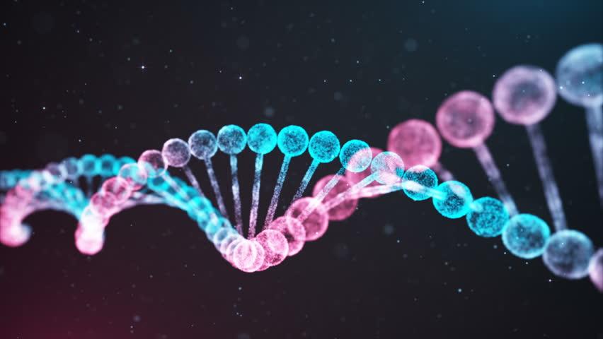 BiColor DNA chain