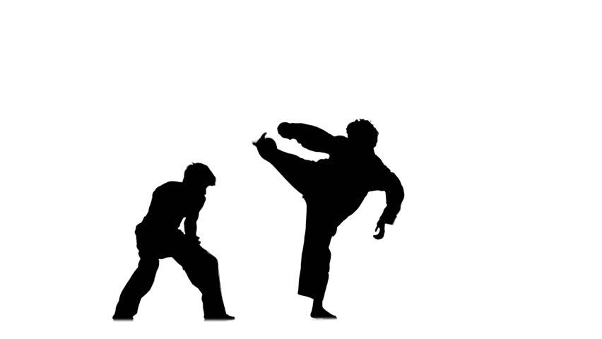 Sparrynh Taekwondo Martial Arts On Video Stock A Tema 100 Royalty Free 10162868 Shutterstock