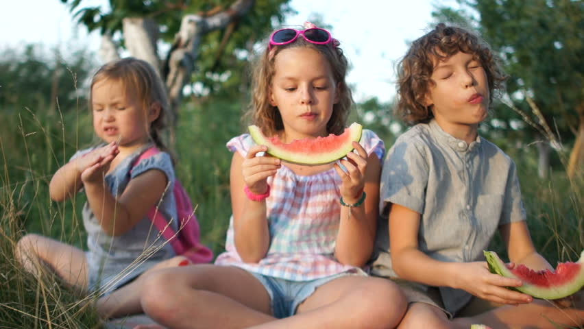 Children are eating a watermelon in a park sitting on the grass. Summer picnic in nature. Three children, a brother and two sisters | Shutterstock HD Video #1016291188