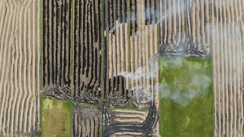 Aerial view of air pollution in the paddy field | Shutterstock HD Video #1016321407