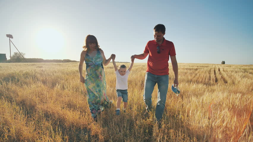 Young parents go with the son on the wheat field in the evening and funny lift on hands of the child. The little son is happy when he is played. #1016328262