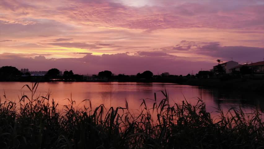 Tai Sang Wai fish pond, sunset before typhoon mangkhut   Shutterstock HD Video #1016420962