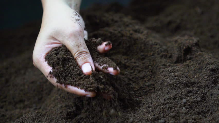 Farmer hand holding and pouring black organic soil in slow motion